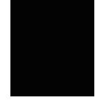 SignMax-Icon-2