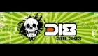 318 Skis Logo by SignMax Bundaberg